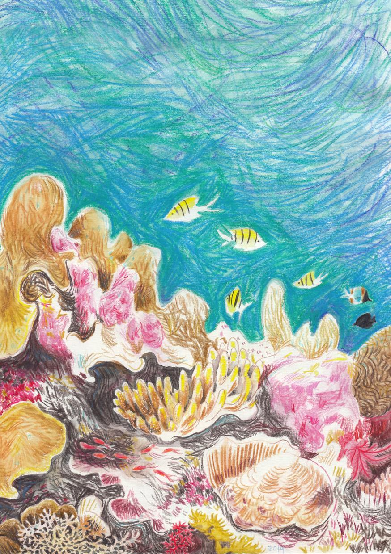 CoralSimonaCiraolo1